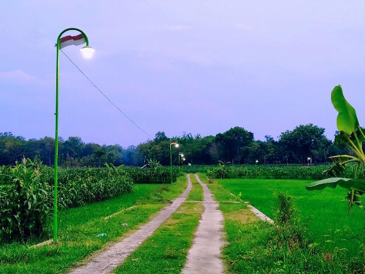 Menghidupkan Perkampungan Dengan Sebuah Tiang Lampu